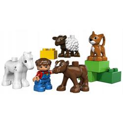 5646-Les bébés animaux de la ferme