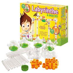 Labyrinthe à Insectes