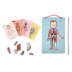 Body Magnet L'Anatomie
