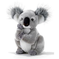Peluche Koala Kolette 28 cm