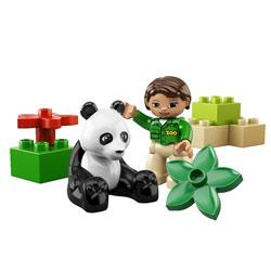 6173-Le Panda