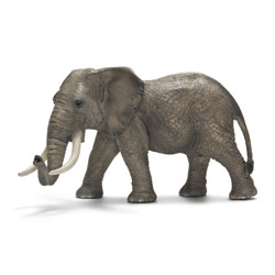 Elephant d'Afrique mâle