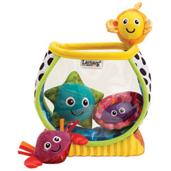 Mon 1er Aquarium
