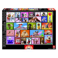 Puzzle 1000 pièces moments partagés animaux