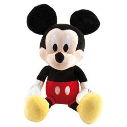 Mickey Rigole