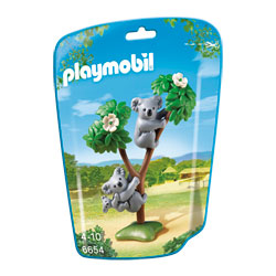 6654-Famille de koalas