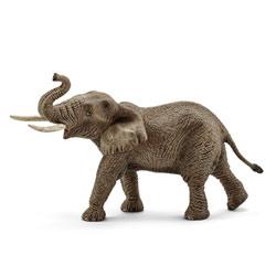 Éléphant Afrique mâle