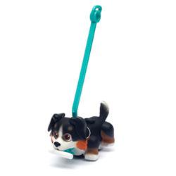 Pet Parade chien Bouvier bernois