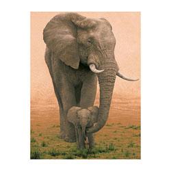 Puzzle 1500 pièces éléphant et éléphanteau