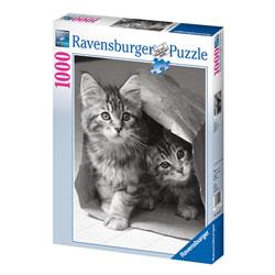 Puzzle 1000P Cache cache