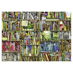 Puzzle 1000P Bibliothèque magique