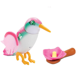 Animal interactif - Oiseau colibri Sugar - Flutter Friends