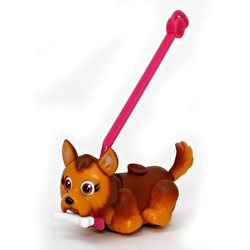 Pet Parade chien Yorkshire