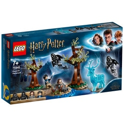 75945 - LEGO® Harry Potter Expecto Patronum