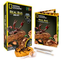 Kit de fouille insectes