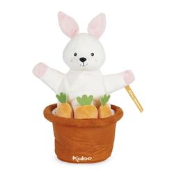 Doudou marionette cache-cache Robin le lapin