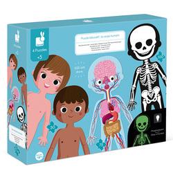 4 Puzzles éducatifs - Le corps humain