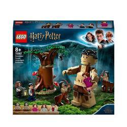 75967 - LEGO® Harry Potter - La Forêt interdite la rencontre d'Ombrage