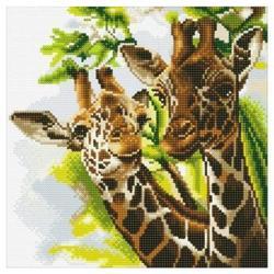 Tableau à diamanter Girafes 30x30 cm