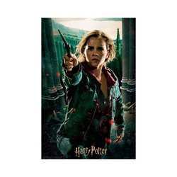 Puzzle 300 pièces Hermione avec boîte en métal