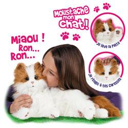 Moustache Mon Chat