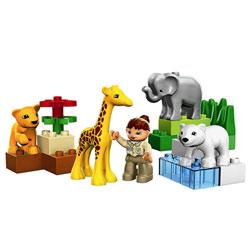 4962-Le zoo des bébés animaux