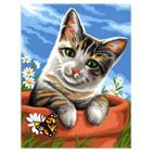 Peinture aux numéros chat tigré