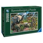 Puzzle au Point d'Eau 18000 pièces