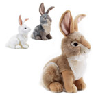 Lapin 30 cm Assortiment