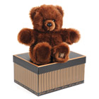 Histoire d'ours-Peluche Ours collection 30 cm