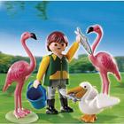4758-Gardien de zoo avec flamants roses et pélican