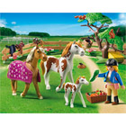 5227-Chevaux et enclos - Playmobil Country