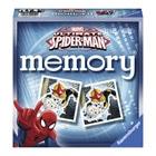 Grand memory Spiderman