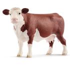 Vache Angus
