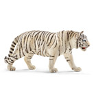 Tigre blanc mâle
