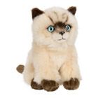Peluche Chat Siamois Assis 15 cm