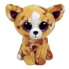 Peluche Beanie Boo's Small Pablo le Chihuahua