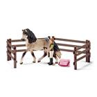 Kit de soin pour chevaux andalous