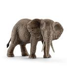 Éléphant d'Afrique femelle