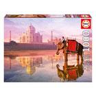 Puzzle 1000 pièces éléphant au Taj Mahal