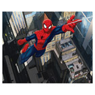 Fresque Murale Spiderman