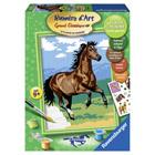 Numero d'art moyen chevaux étalons chocolat au galop