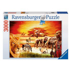 Puzzle 3000 pièces fierté du massaï