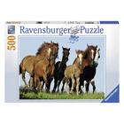 Puzzle 500 pièces horde de chevaux
