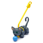Pet parade Chat chartreux