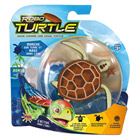 Robot tortue marron