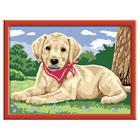 Numéro d'Art-Labrador au bandana