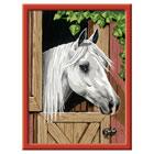 Numéro d'art-Cheval blanc dans son box