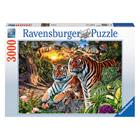 Puzzle 3000 pièces tigres cachés