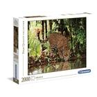 Puzzle 2000 pièces - Leopard